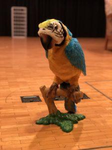Papagei Fridolin bei der Produktion Hesch en Vogel? der Theatergruppe Friesenberg.